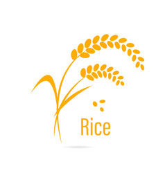 Cereal icon with rice vector