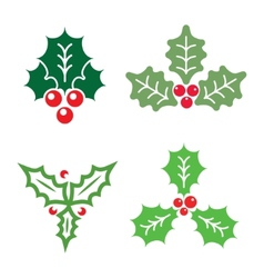 Christmas holly vector image