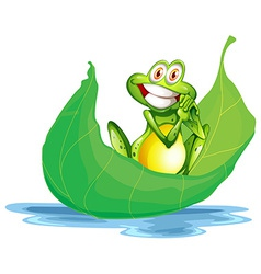 A smiling frog on the big leaf vector image vector image