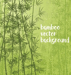bamboo07 vector image