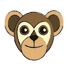 Capuchin primate brazil fauna drawing vector