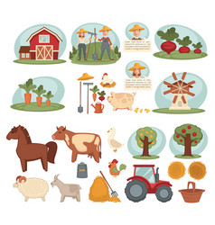 domestic animals organic vegetables and young vector image vector image