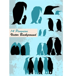 different penguins vector image