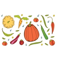 Colorful hand drawn vegetables set vector image vector image