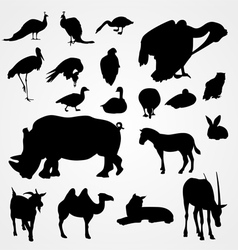 Set of silhouettes of animals on zoo vector image