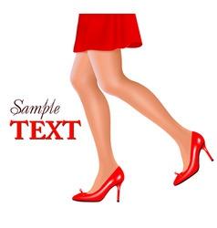 woman legs vector image