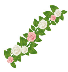 Colorful crown of leaves with roses floral design vector