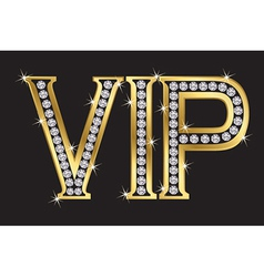 VIP Badge vector image vector image