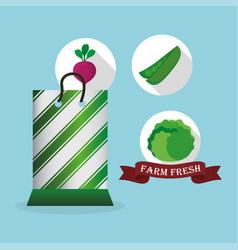 farm fresh vegetables market bag shop vector image