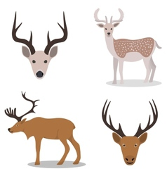 Deer and their head vector