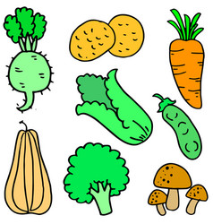Doodle of vegetable various collection vector