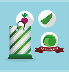 farm fresh vegetables market bag shop vector image