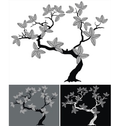 silhouette of tree vector image vector image