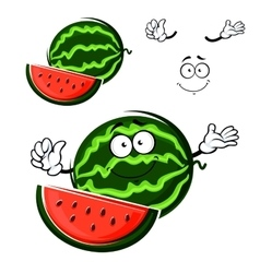 Watermelon fruit cartoon isolated character vector