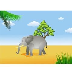 elephant in the savanna vector image