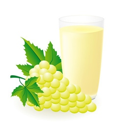 white grape juice vector image vector image