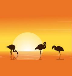 at sunset flamingo on lake scene vector image vector image