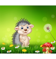 Cute little hedgehog on grass background vector