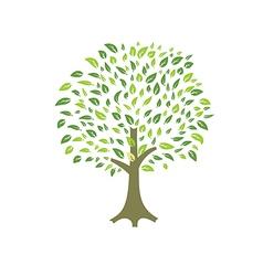 summer tree leaves vector image