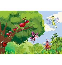 Insects at the forest vector image