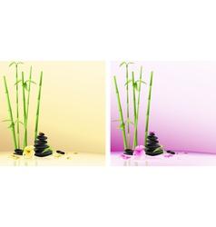 Spa stones design vector image