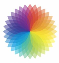 color flower vector image