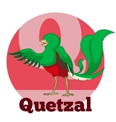 Abc cartoon quetzal vector