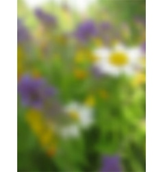 summer blurred background vector image vector image