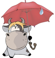 A small cow and an umbrella cartoon vector