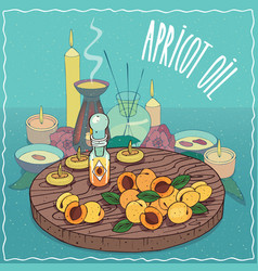 Apricot oil used for aromatherapy vector