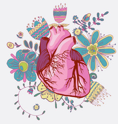 drawing of the heart anatomical vector image vector image