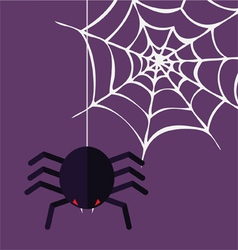 Halloween decoration spider and cobweb vector