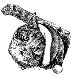 kitten with christmas hat 1 vector image