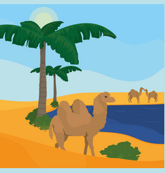 Oasis on desert vector