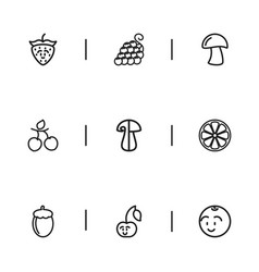 Set of 9 editable kitchenware icons includes vector