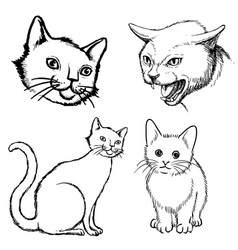 set of cat doodle hand drawn vector image