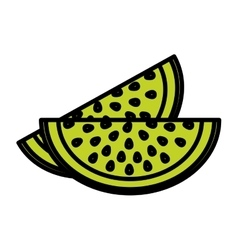 Isolated watermelon fruit design vector image