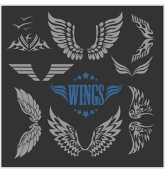 Set of decorative wings isolated vector