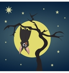 Bat hanging on a dry tree vector
