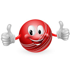 cricket ball man vector image vector image