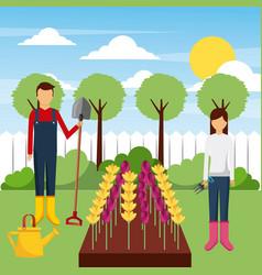 Gardeners working field with flowers tools tree vector