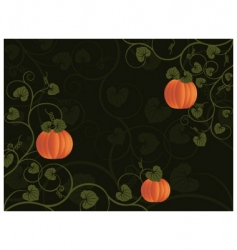 pumpkin background vector image vector image