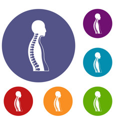Human spine icons set vector