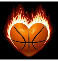 basketball on fire vector image
