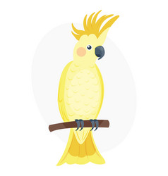 Cartoon tropical yellow parrot wild animal bird vector