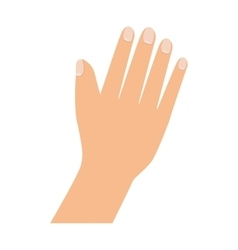 Hand palm finger vector