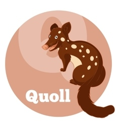 Abc cartoon quoll vector