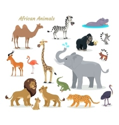 African Fauna Species Cute Animals Flat vector image