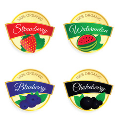 Label of fruit set in colorful vector