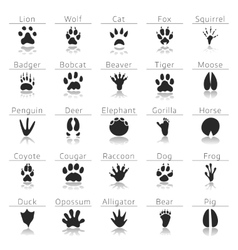 Animal track prints set vector image